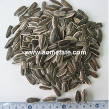 2013 new crop sunflower seeds