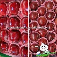 China Tianshui fresh red Huaniu apple