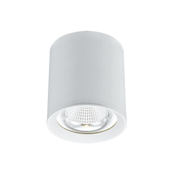 Hanging Dimmable 20W LED Downlight