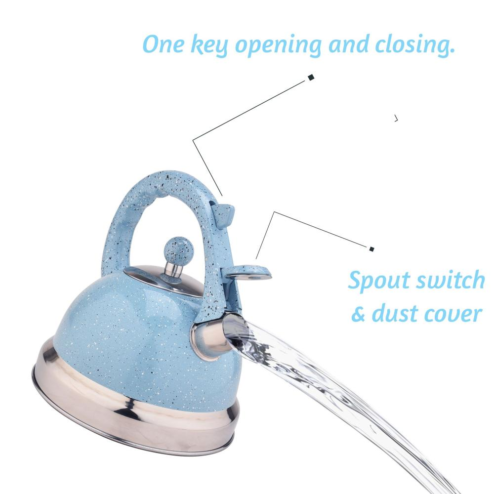 Sky Blue Stainless Steel Tea Kettle