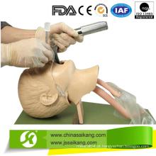 Modelo avançado de intubação traqueal infantil (CE / FDA / ISO)