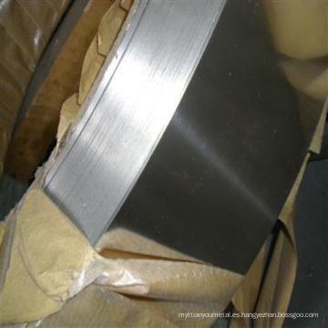Tira 1j79 / Permalloy Strip / E11c