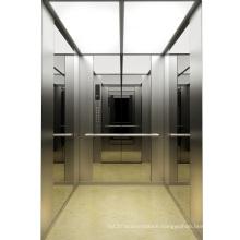 Eathing Mirro Home Elevator Price, Low Price Elevator