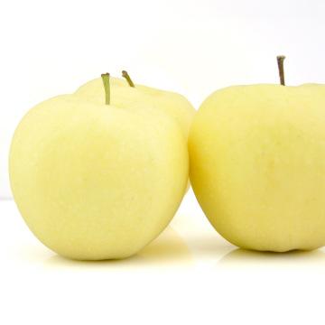 High Quanlity Fresh Gold Apple Sweet Apple