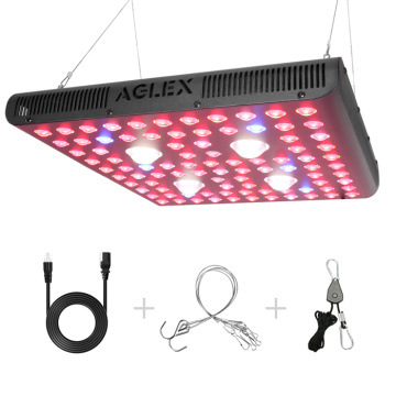 2000W COB Grow Lights LED de espectro completo