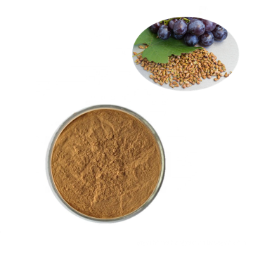 Hot Selling Pure Natural 100% Organic Grape Seed Extract Powder Procyanidins 95%