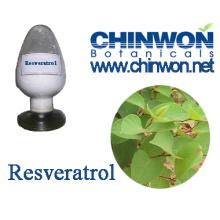 Healthy Food Resveratrol Powder Factory