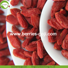 Beli Natural Nutrition Kering Buah Chinese Wolfberry