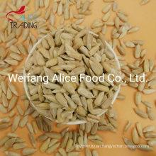 Food Ingredients Wholesale China Sunflower Seeds Kernels