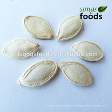Secado Shine Skin Pumpkin Seeds In Shell