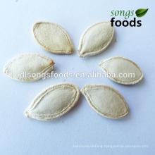 Dried Shine Skin Pumpkin Seeds In Shell