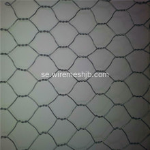 PVC Coted Hexagonal Wire Mesh För Farm