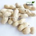 Importadores de maní en la India