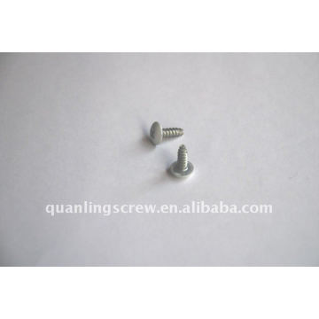 Painted Truss Head Self Tapping Screw