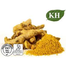 Alto Curcuminoid Natural 10% Extracto de cúrcuma