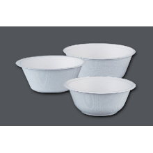 Paper Pulp Bowl