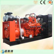 China Unidad de Generación de Gas de Metano LNG para Energía Doméstica Eléctrica