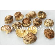 2.5-3cm Dried Deform K Shiitake Mushroom