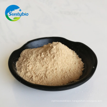 Chinese Manufacturer poultry feed autolyzed yeast for sale