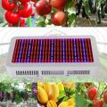 Full Spectrum 600W LED wachsen Licht für blühende Pflanze und Hydroponik System LED Pflanzenlampen AC85 ~ 265V
