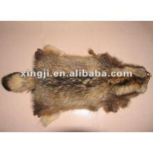 peau de fourrure de raton laveur brut