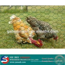 1/2 Inch PVC Coated Galvanized Hexagonal Wire Mesh/ hexagonal chicken wire mesh alibaba china