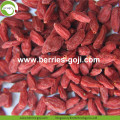 Low Sugar Pure Authentic Super Común Goji Berries