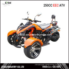 200cc EEC Trike ATV Kawasaki Quad Hot Sale in Germany 250cc Trike ATV with EEC Approved