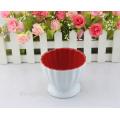 China wholesale ceramic custom personalized ice cream bowl