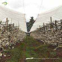 Transparent tarpaulin cherry tree plastic protection cover