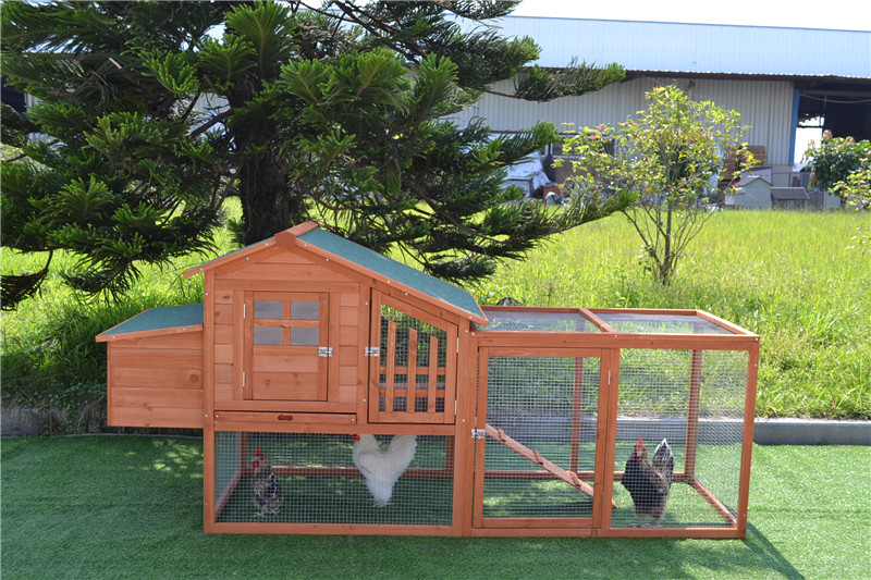 cute chicken coops for sale