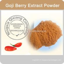Goji Powder / Wolfberry Powder