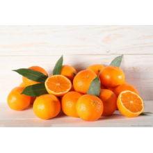 Good Quality Orange