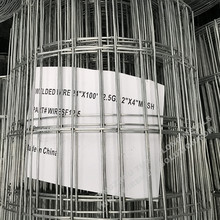 "2"" x 4"" Galvanised Welded Wire Mesh"