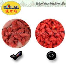 Mispel Goji-Beere Chinesische Wolfberry