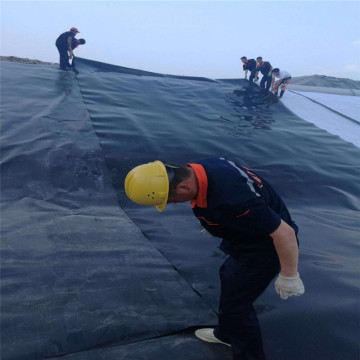 Estanques de peces de plástico Impermeable HDPE Geomembrane Liner Price