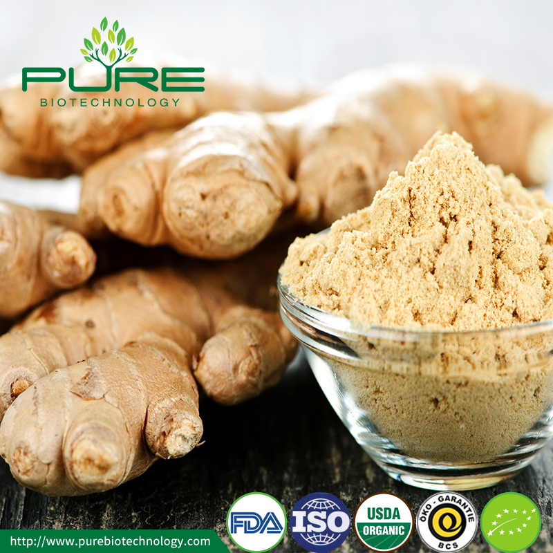 Organic Dried Ginger Powder2