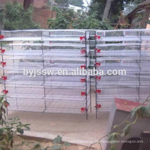 Wholesale upright quail cages with low price quail cage kerala