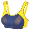 New Design Sexy Bra, Dri-Fit Yoga Bra, Sports Bra, China Factory′s Sports Bra, Women Wear