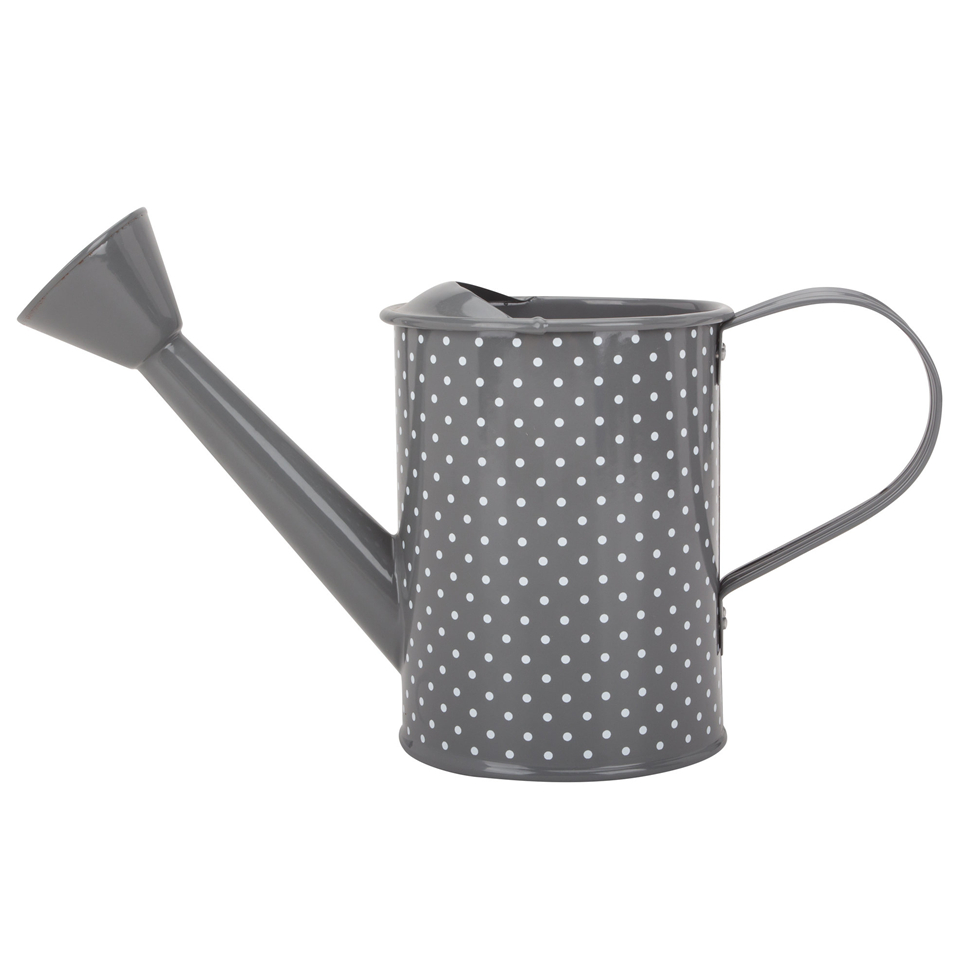 Small Decorative Watering Can