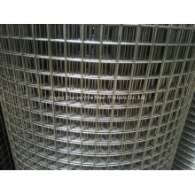 Metal Welded Wire Mesh in Roll for Fence
