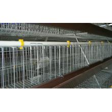 H automatische Masthähnchen Käfig Typsystem