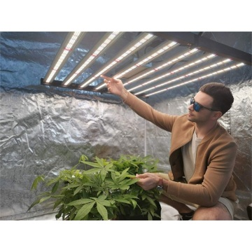 Jardinería Agricultura Hidroponía Vertical 640W Grow Light Bar