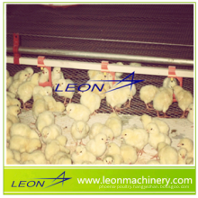 automatic poultry nipple drinking system for livestock