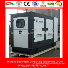 250kva natural gas generator with competitive price
