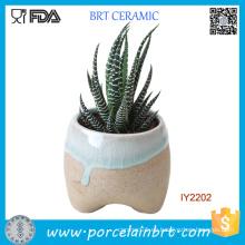 Planta de cerámica original pequeña maceta de jardín