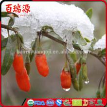 Ningxia goji goji berry fiyat goji berry makes your look more beauty