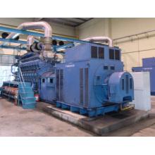Diesel/Gas Generator Electricity Power Station