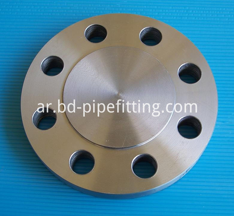 ASME SA182 F304L Forged Flanges