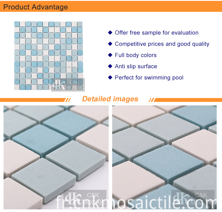 Unique Ceramic Mosaic Designs for Swimming Pool
